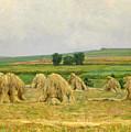 Harvest by Frantisek Kavan