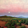 Harvest Moon by Donna Clair