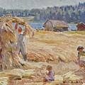Harvest by Santeri Salokivi