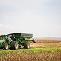 Harvest Time by Elizabeth Wilson