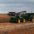 Harvest Time by Gary Prill