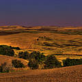 Harvested Fields by David Patterson