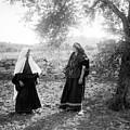 Harvesting Near Bethlehem by Munir Alawi