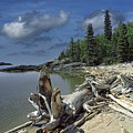 Hattie's Bay In Pukaskwa National Park Ontario by Randall Nyhof