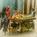Havana Cuba Street Vendor by Joan Carroll