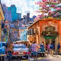Havana In Bloom by Les Palenik