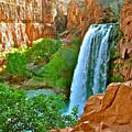 Havasu Falls Canyon by Brent Sisson