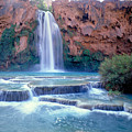 Havasu Falls - Grand Canyon by Russ Finley