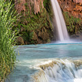 Havasu Falls Travertine Ledge by Colin D Young