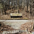 Have A  Seat by Amanda Kessel
