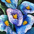 Hawaii Flowers by Jamie Frier