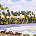 Hawaii Postcard by Hawaiian Legacy Archive - Printscapes