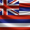 Hawaii State Flag by Serge Averbukh