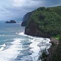 Hawaiian Black Sand Beach by Celeste Drewien