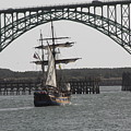 Hawaiian Chieftain In Yaquina Bay by Mark Cheney