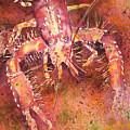Hawaiian Lobster by Tanya L Haynes - Printscapes