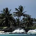 Hawaiian Paradise by Pamela Walton