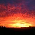 Hawaiian Sunrise by Charles  Jennison