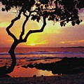 Hawaiian Sunset by D Nigon