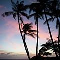 Hawaiian Sunset On Molokai  by Ralf Broskvar