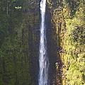 Hawaiian Waterfall by Athala Carole Bruckner
