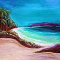 Hawaiin Blue by Patricia Piffath