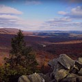 Hawk Mountain Sanctuary by David Dehner