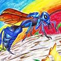Hawk Wasp by Bryant Lamb