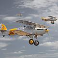 Hawker Nimrod by Pat Speirs