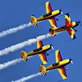 Hawks Of Romania by Daliana Pacuraru