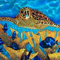 Hawksbill Sea  Turtle by Daniel Jean-Baptiste