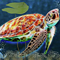 Hawksbill Sea Turtle by Ericamaxine Price