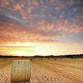 Hay Bale Field At Sunrise by Stu Meech