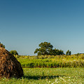 Hay Bale On A Rural Field by Zoltan Albertini