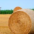 Hay Bale With Crane by Michael Garyet