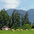 Hay Bales And A Barn - Kalispell Montana by John Trommer