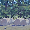 Hay Bales And Crows by Bill Tomsa