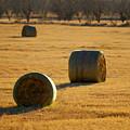 Hay Bales by Jill Reger