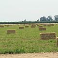 Hay Bales by Joshua Sunday