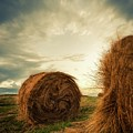 Hay Bales On Farm Field by Otto Gal