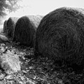 Hay Bales Paxton Ma by Richard Danek