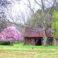 Hay Barn And A Touch Of Pink by Judy  Waller