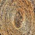 Hay Bay Rolls 5 by Jeelan Clark