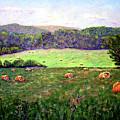 Hay Field by Stan Hamilton