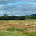 Hay Fields In The Adirondacks by Patricia Fitz-Gerald