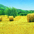 Hay Harvest In Tuscany by Dominic Piperata