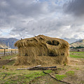 Hay Hut In Andes by Alexandre Rotenberg