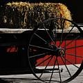 Hay On Wheels by Lori Mahaffey