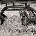Hay Rake by Kathleen Struckle