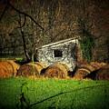 Hayroll Shed by Michael L Kimble
